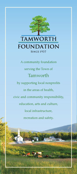 Tamworth Foundation brochure